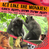 Act Like The Monkies